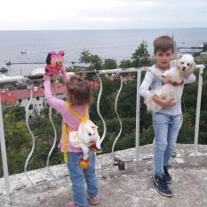 Помогите найти Пуделя - Одесса
